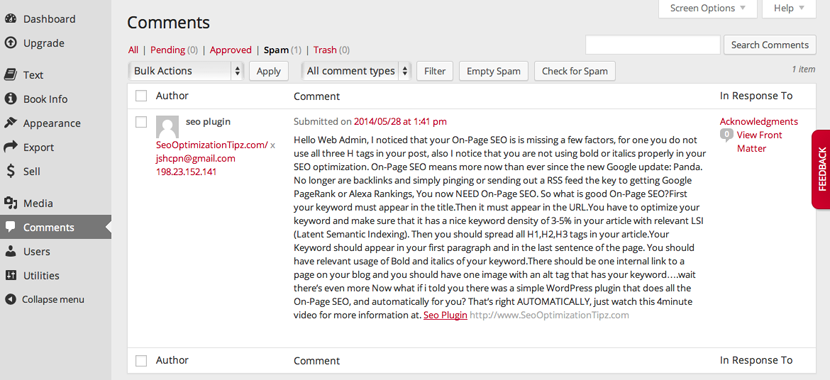 Example of spam comment