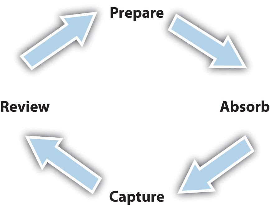 The Learning Cycle: Prepare, Absorb, Capture, and Review